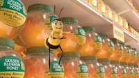 Bee Movie - 8 x 10 Color Photo #15