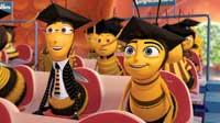Bee Movie - 8 x 10 Color Photo #27