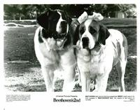 Beethoven's 2nd - 8 x 10 B&W Photo #1