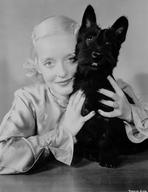 Bette Davis - Bette Davis Portrait Holding a Black Cat in Silk Long Sleeve Shirt