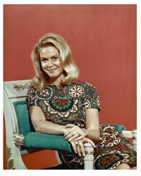 Bewitched - 8 x 10 Color Photo #1