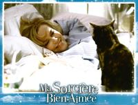 Bewitched - 11 x 14 Poster French Style C