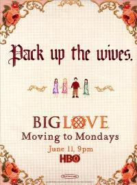 Big Love (TV) - 11 x 17 TV Poster - Style M