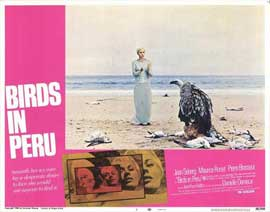 Birds in Peru - 11 x 14 Movie Poster - Style E