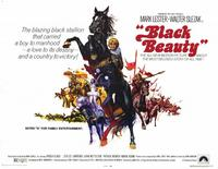 Black Beauty - 11 x 14 Movie Poster - Style A
