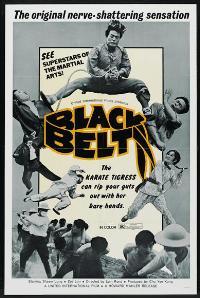 Black Belt - 27 x 40 Movie Poster - Style B