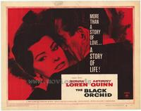 Black Orchid - 22 x 28 Movie Poster - Half Sheet Style A