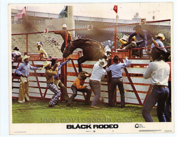 Black Rodeo - 11 x 14 Movie Poster - Style E
