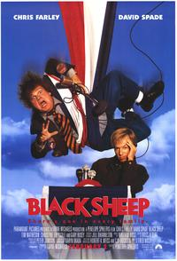 Black Sheep - 43 x 62 Movie Poster - Bus Shelter Style A