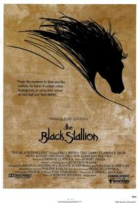 The Black Stallion - 43 x 62 Movie Poster - Bus Shelter Style A