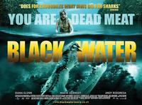 Black Water - 11 x 14 Poster UK Style A