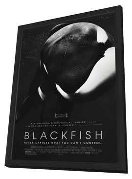 Blackfish - 27 x 40 Movie Poster - Style A - in Deluxe Wood Frame