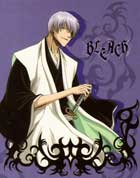 Bleach (TV) - 11 x 17 TV Poster - Japanese Style D