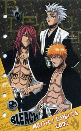 Bleach (TV) - 11 x 17 TV Poster - Japanese Style AJ