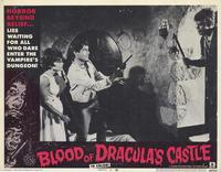 Blood of Dracula's Castle - 11 x 14 Movie Poster - Style E