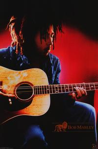 Bob Marley - Music Poster - 22 x 34 - Style E