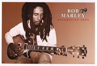 Bob Marley - Music Poster - 24 x 36 - Style G