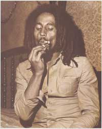 Bob Marley - Music Poster - 16 x 20 - Style A
