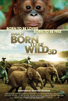 Born to Be Wild - DS 1 Sheet Movie Poster - Style A