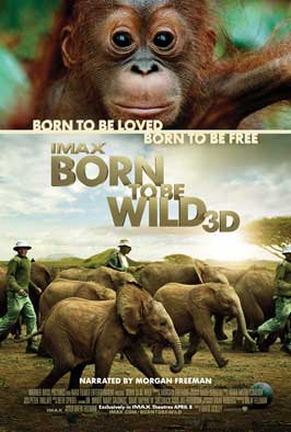 Born to Be Wild - 43 x 62 Movie Poster - Bus Shelter Style A