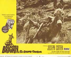 Brighty of the Grand Canyon - 11 x 14 Movie Poster - Style A