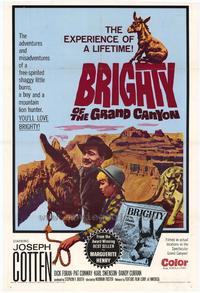 Brighty of the Grand Canyon - 43 x 62 Movie Poster - Bus Shelter Style A