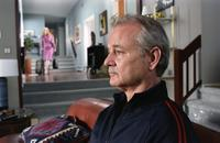 Broken Flowers - 8 x 10 Color Photo #15