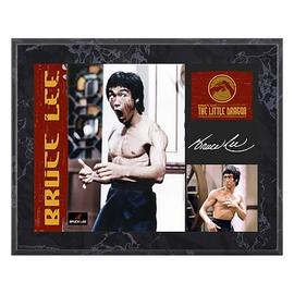 Bruce Lee - The Little Dragon 8x10 Plaque