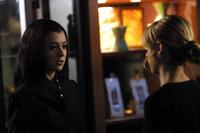 Buffy The Vampire Slayer (TV) - 8 x 10 Color Photo #082