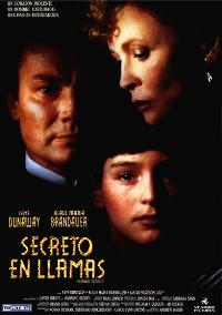 Burning Secret - 11 x 17 Movie Poster - Spanish Style A