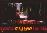 Cabin Fever - 11 x 14 Poster French Style B