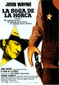 Cahill U.S. Marshal - 27 x 40 Movie Poster - Spanish Style A