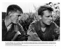 Casualties of War - 8 x 10 B&W Photo #6
