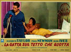 Cat on a Hot Tin Roof - 11 x 17 Poster - Foreign - Style B