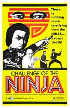 Challenge of the Ninja