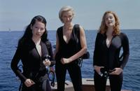 Charlie's Angels: Full Throttle - 8 x 10 Color Photo #43