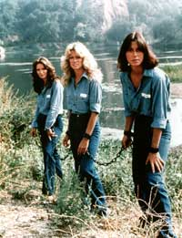 Charlie's Angels (TV) - 8 x 10 Color Photo #008