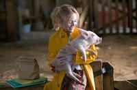 Charlotte's Web - 8 x 10 Color Photo #3