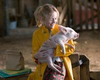 Charlotte's Web - 8 x 10 Color Photo #14