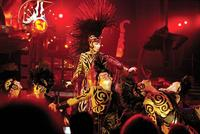 Cher: Live in Concert - 8 x 10 Color Photo #6