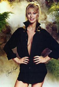 Cheryl Ladd - 27 x 40 Movie Poster - Style B