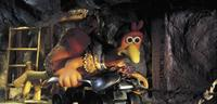 Chicken Run - 8 x 10 Color Photo #12