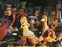 Chicken Run - 8 x 10 Color Photo #23