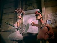 Chicken Run - 8 x 10 Color Photo #24