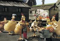 Chicken Run - 8 x 10 Color Photo #27