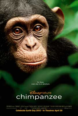 Chimpanzee - 27 x 40 Movie Poster