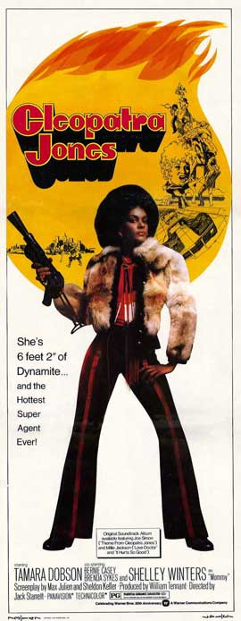 Cleopatra Jones - 14 x 36 Movie Poster - Insert Style A