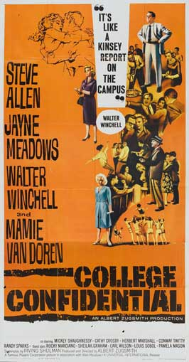 College Confidential - 27 x 40 Movie Poster - Style B