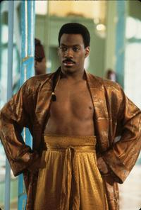 Coming to America - 8 x 10 Color Photo #1