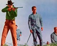 Cool Hand Luke - 8 x 10 Color Photo #3